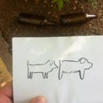 perros y botellas