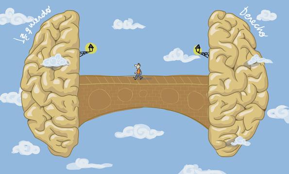 coequipos-cerebro