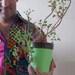 aro_plants