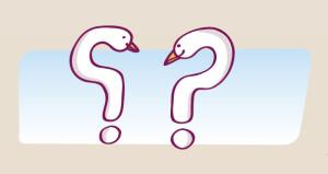 detalle panel preguntas-03